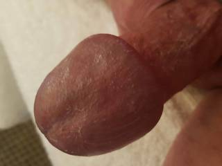 Tieing up my cock gets me head even bigger than usual...