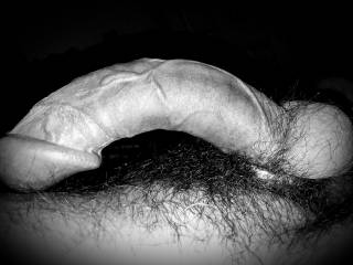 I like the black and white shots. How about you