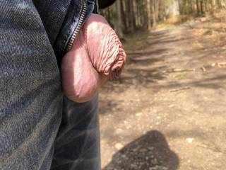 my cock is just enjoying the sun on a forest track :-)
