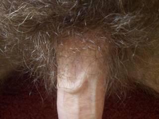 Cum hairy homemade tiny