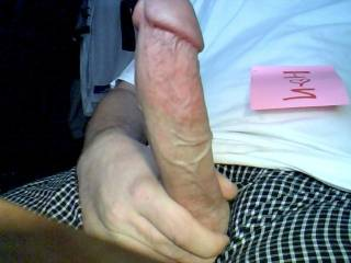 a young hung cock any one want to meet and have some fun?