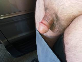 Hubby\'s cock after I sucked him off in the parking garage of a shopping mall