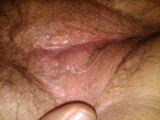 Just another pussy pic! What ya think?