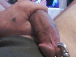 Just holding my big pierced flaccid cock