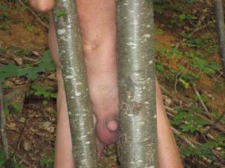 Took off my clothes and walk naked through the woods.