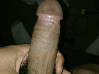 my big hairy cock. you like?