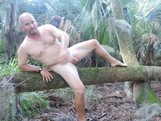 naked on a tree