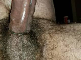 My big stiff cock and hairy balls. Ride it!