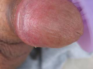 Here I am sitting naked on my back patio masturbating my cock with a clit vibrator.  I think the little guy likes it.  Are those specks of tasty smegma on my cock that are waiting to be licked off?