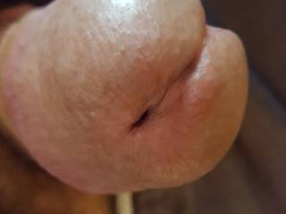 Picture of my cock head taken this morning while texting my MeetMe Slut NC.