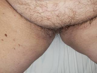 Hairy pussy,  before trimming a different view
