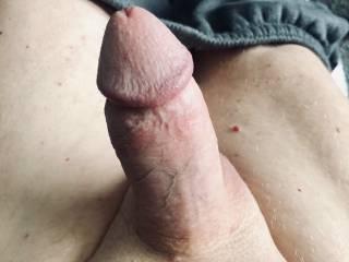 Very Erect Cock