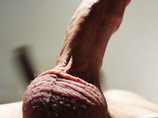 OMG what a magnificant cock!!! I want to suck ths bulging head while playing with your balls to make the cum creamy... Can I get your cream in my hungry mouth??? Mrs.M