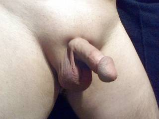 My freshly shaved cock and balls.