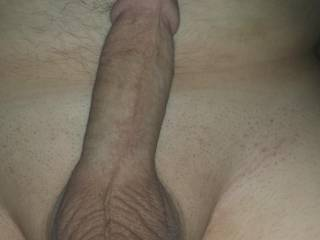 I'm sure he would let you suck his cock