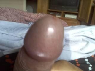 my hard  fat cock head