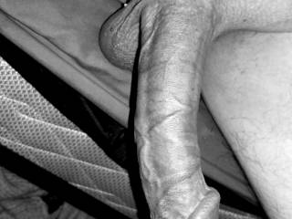 A nice big dick in Black and white