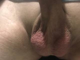 wanna suck my balls as your fucking my wife