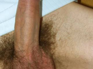 Shwoing you guys my fully erect cock!