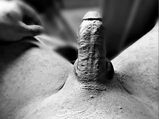 Big dick black and white