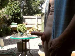 Showing my neighbour my erect shaven cock.
