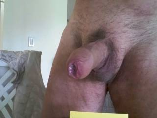 A nice close up of my cock, wet with pre cum.  When you suck a cock, do you like starting with a soft cock and feel it getting harder and harder in your mouth? Or do you like to start with a nice hard cock?