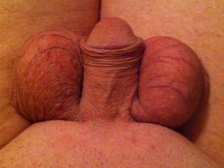 want to suck those beautiful balls!!!