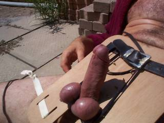 a little outdoor cock bondage, anyone have any ideas as to what might come next.