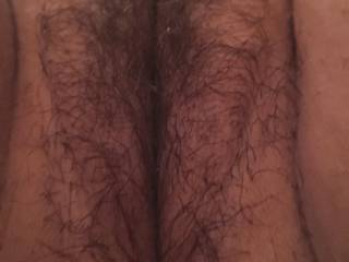 I had my pussy trimmed. Hairy enough for you or you want me to shave it bald?