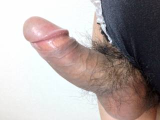 My cock with panties.