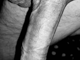 My big horny dick needs some lovin