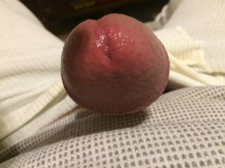 Soaked with pre cum