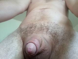 Freshly Smoothly Shaved & Oiled Cock, Scrotum and Ass, With a New Haircut
