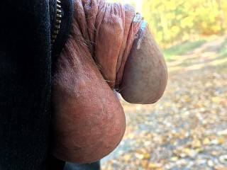 Showing my very soft cock with foreskin pulled back the beauty of the wood. ;-)