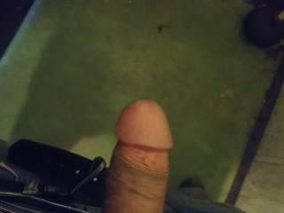 I need my dick sucked asap