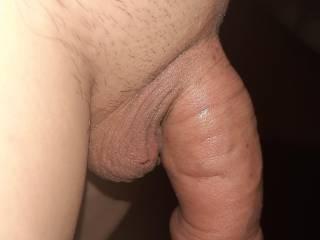 My fat pumped cock.
