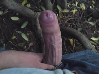 jerking huge cock public park outdoor