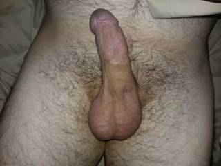 I was just laying down, moved my cock, took the picture and got my cock in a great position.