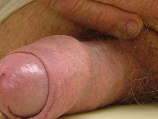 Some pics of my cock that others seem to enjoy. figured I'd share with Zoig friends.