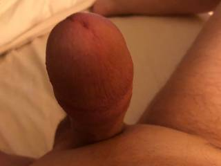cock all ready to fuck