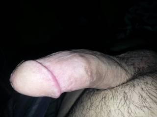 Hard dick, Shaft, Rod, Stiff Cock
