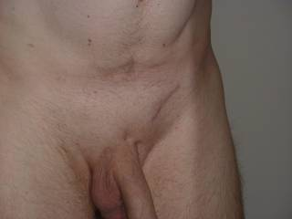 my cock shaved