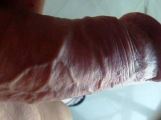 Hard and throbbing...needs a moist pussy!
