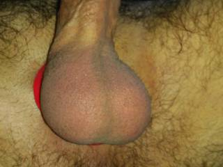 Tight balls need some release.......anyone care for a creamy load of cum