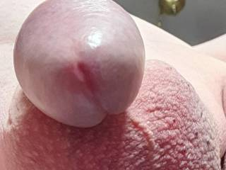 Good head and firm balls