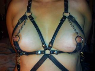 Those great pair of tits framed in leather with chains that encircle her hard nipples are so hot that it gives my cock and her nipples a lot in common