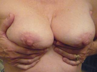 An assortment of tits for your enjoyment.