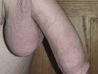 My fully flaccid size, right upon up. Still 6.5 inches long, which is longer than the average man is erect.