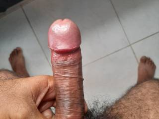 Oiled up cock  2