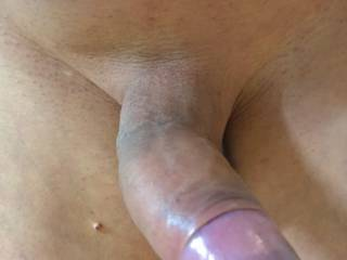 My cock needs to be sucked...
